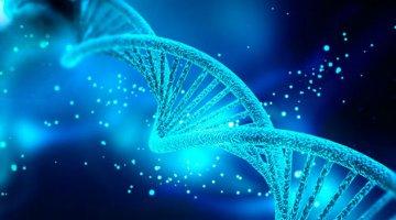 Reprogramação de DNA
